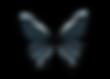 0a2187f8-71c5-40ee-9e1f-d95e3de43471.png