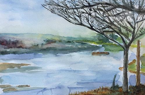 A Lakeland Landscape
