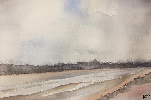 Along Wells Beach Fine Art Print