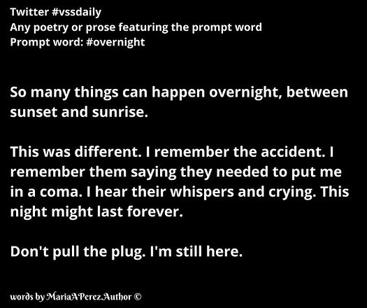 vssdaily - overnight.jpg