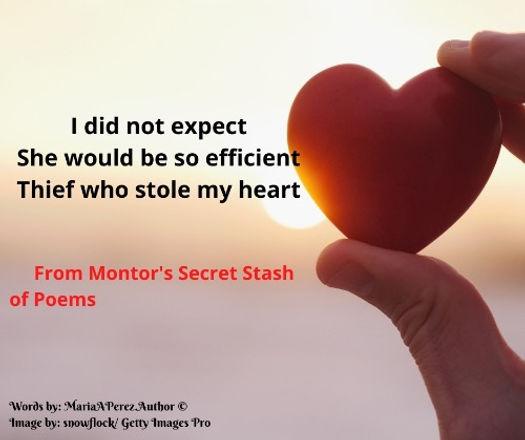 Montor's SSOP - Thief who stole my heart_edited.jpg