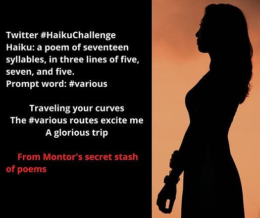 Haiku Challenge - various.jpg