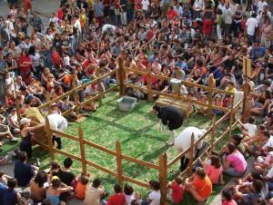 Corpus_The Sheep__