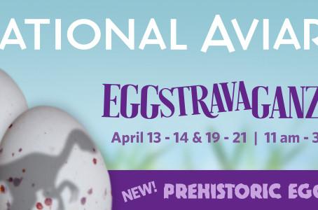 Aviary Eggstravaganza 2019
