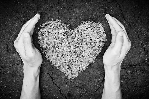 2 Hände schützen Herz aus Blumen