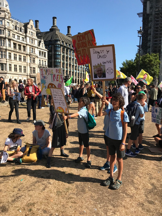 Thoughts on the global climate strike