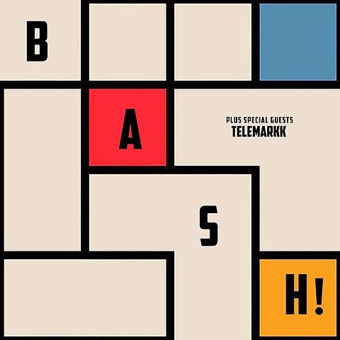 telemarkk bash gig 21st june poster.jpeg