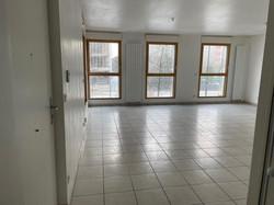 rénovation d'appartement à Lyon etat des lieux à confluence vue du salon