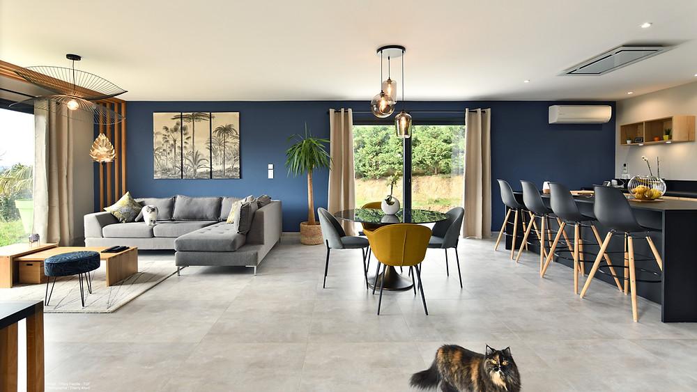Projet d'aménagement de salon avec mise en peinture réalisée par Gregory Pey Ravier près de Lyon