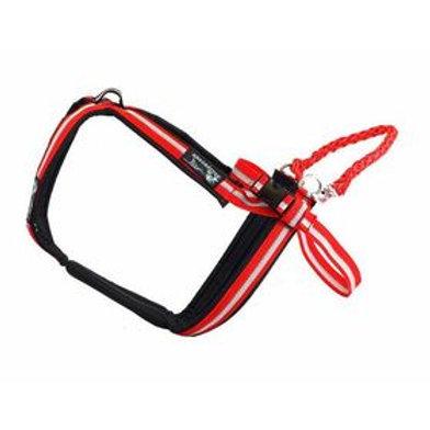 Dragratten Multi-Sport Harness
