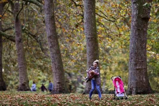 Au parc St-James de Londres, le 1er novembre. ADRIAN DENNIS / AFP