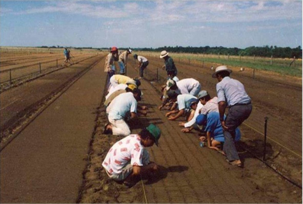 Ces emplois non délocalisables permettent aussi de créer de la valeur, qui reste dans la région – Photo Las Gaviotas