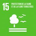 Logo-UN15.png