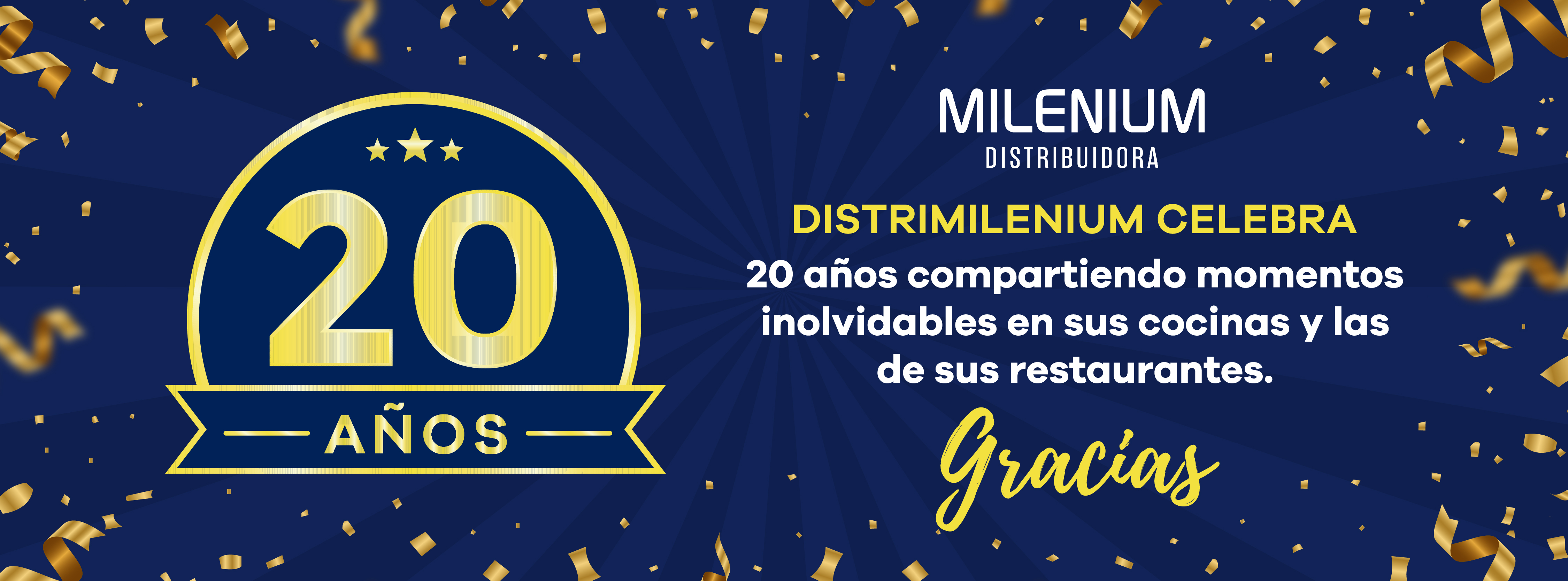 banners_milenium_20_años-04