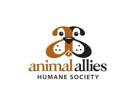 Psychiatric drugs for combating kennel induced anxiety and aggression in animal shelters