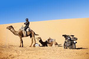 desert_wolves_scenes_lifestyle110 EDIT.j