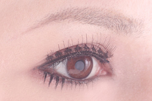 Paperlash laceliner LACE0009(2ペア)ELN-0009