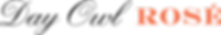 Day Owl Logo 1 Line.png