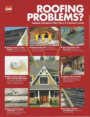 Roofing Problems?