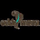 logo EDDI MENA-01.png