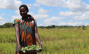 Tanzania Young Woman Cropped.jpg