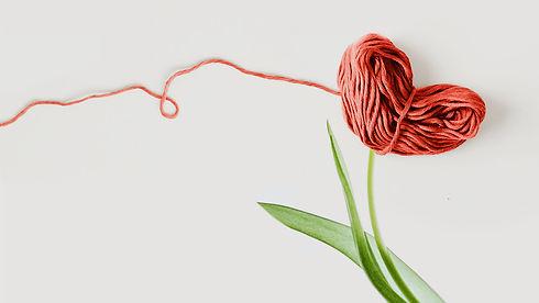 PROGOTAN-filo-tulipano-solo-img.jpg