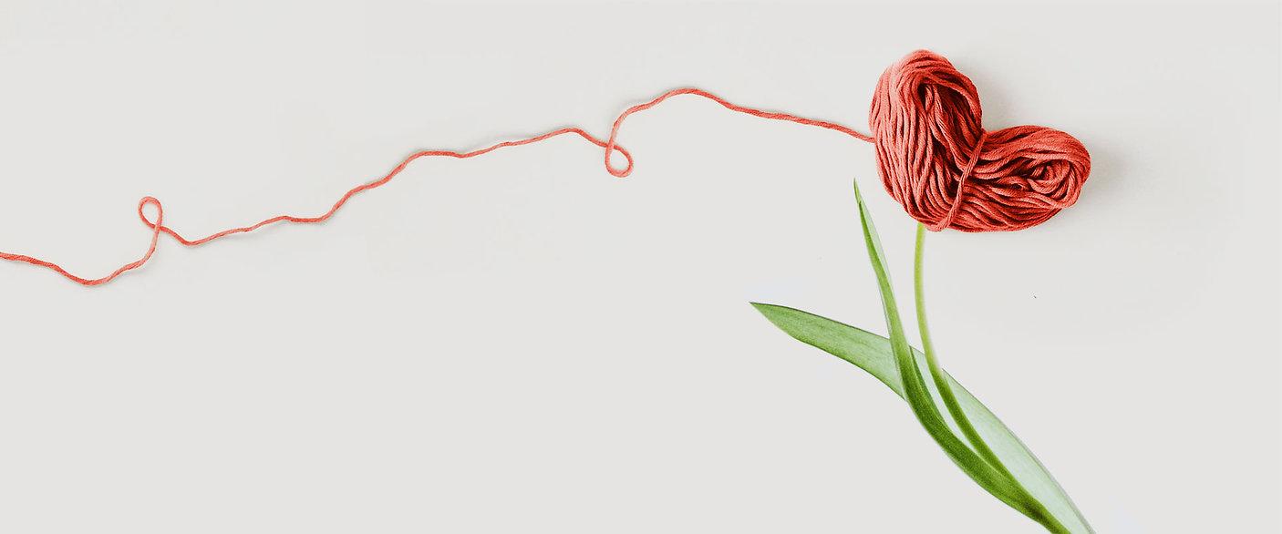 PROGOTAN-filo-tulipano-solo-img-lungo.jp