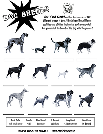 dogbreeds.png