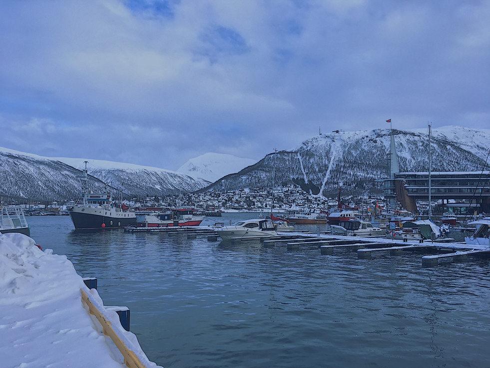 Tromso Vibes