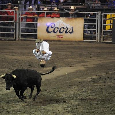 FWST au Québec : Bull fighting