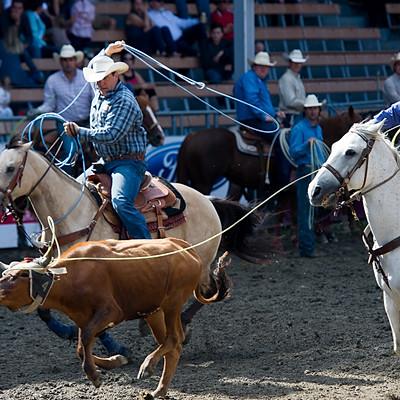 FWST au Québec : cowboys