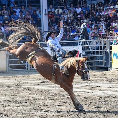 FWST au Québec : rodéo chevaux