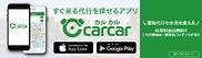 carcar240_70.jpg