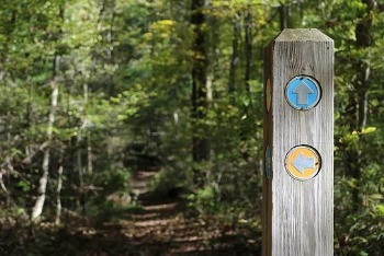 Trail Markers: I Know
