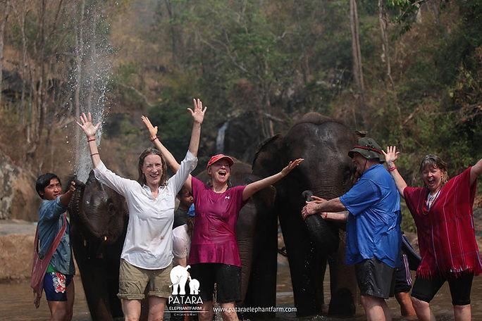 Elephant Farm being sprayed (2).jpg