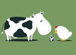 cow chicken.jpg
