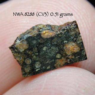 NWA 8288 9CV3) 0.51 grams