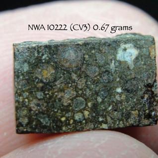 NWA 10222 (CV3) 0.67 grams