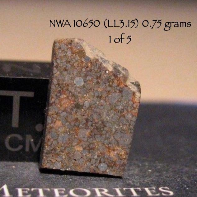 NWA 10650 (LL3.15) 0.75 grams