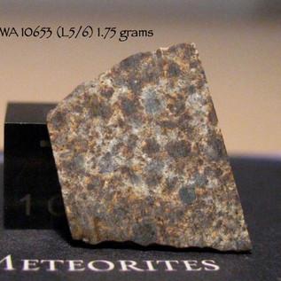 NWA 10653 (L5/6) 1.75 grams