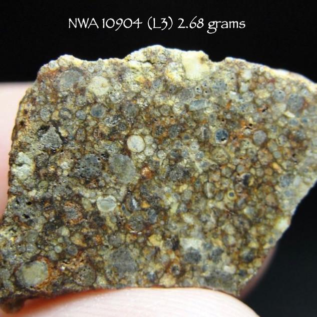 NWA 10904 (L3) 2.68 grams