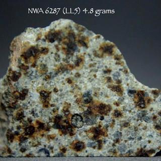 NWA 6287 (LL5) 4.8 grams