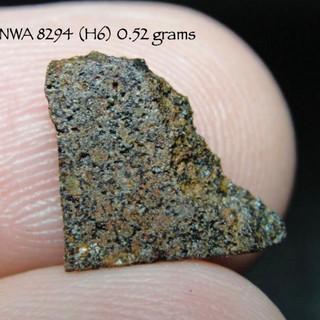 NWA 8294 (H6) 0.52 grams