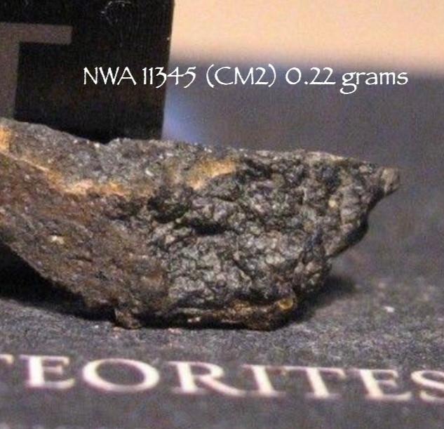 NWA 1345 (CM2) 0.22 grams