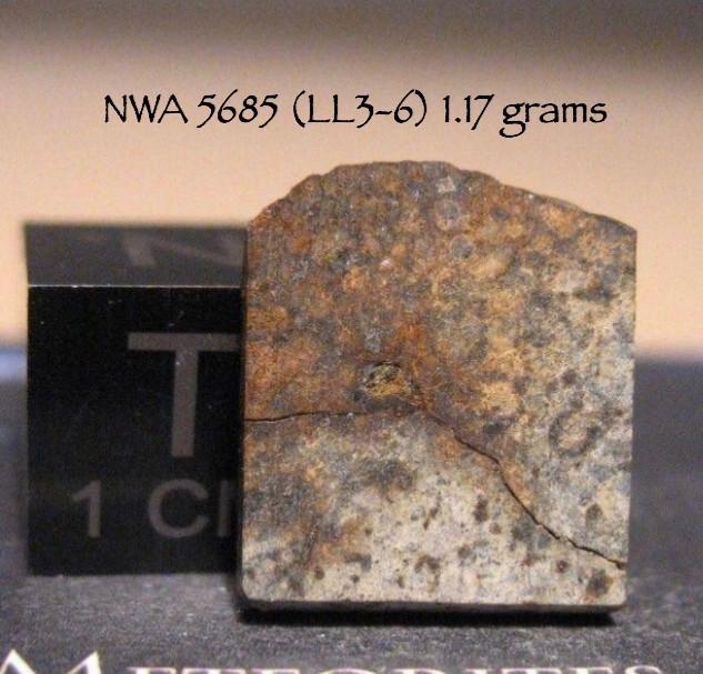 NWA 5695 (LL3-6) 1.17 grams