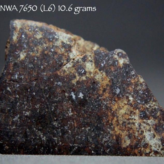 NWA 7650 (L6) 10.6 grams