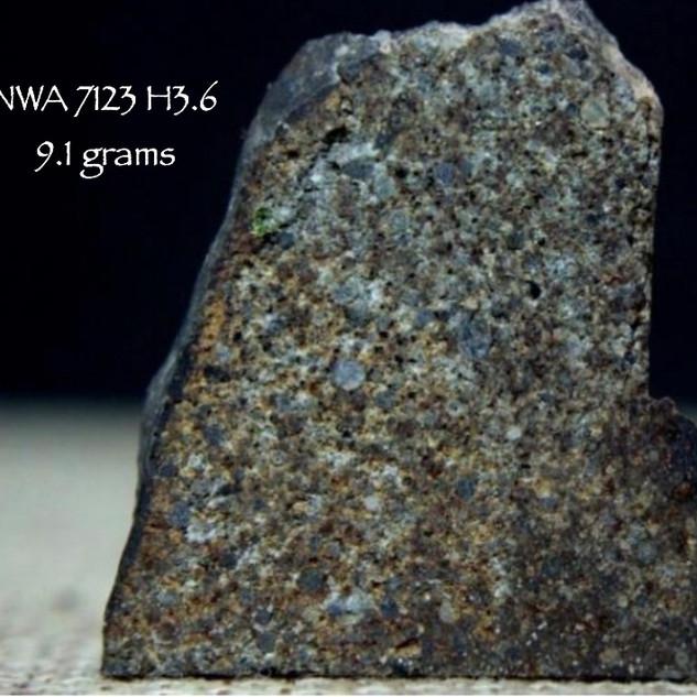 NWA 7123 (H3.6) 9.1 grams