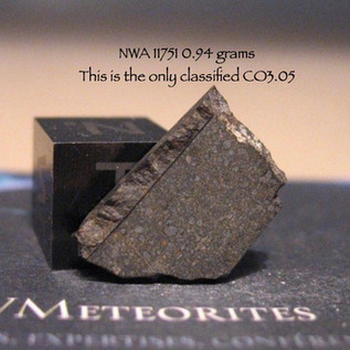 NWA 11751 (CO3.05) 0.94 grams