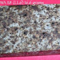NWA 118 (LL6) 16.6 grams