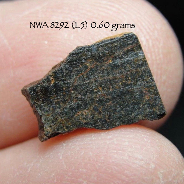NWA 8292 (L5) 0.60 grams